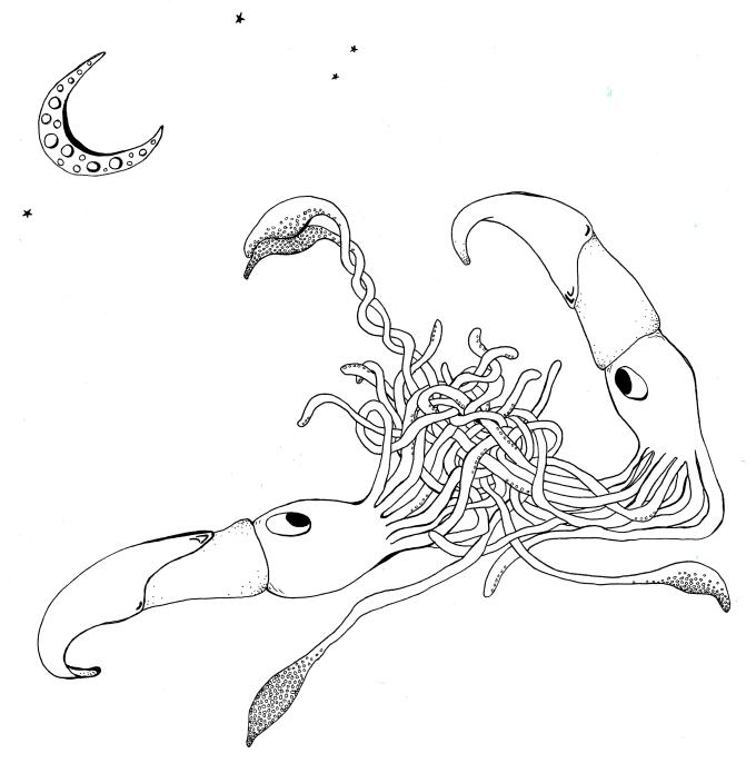 SquidLove